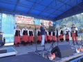 Vi festiwal piosenki ludowej w Jeleniu 2017r 006 (Copy)
